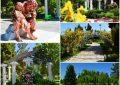 رئیس سازمان  ساماندهی ساعات فعالیت باغ گلها کرمانشاه
